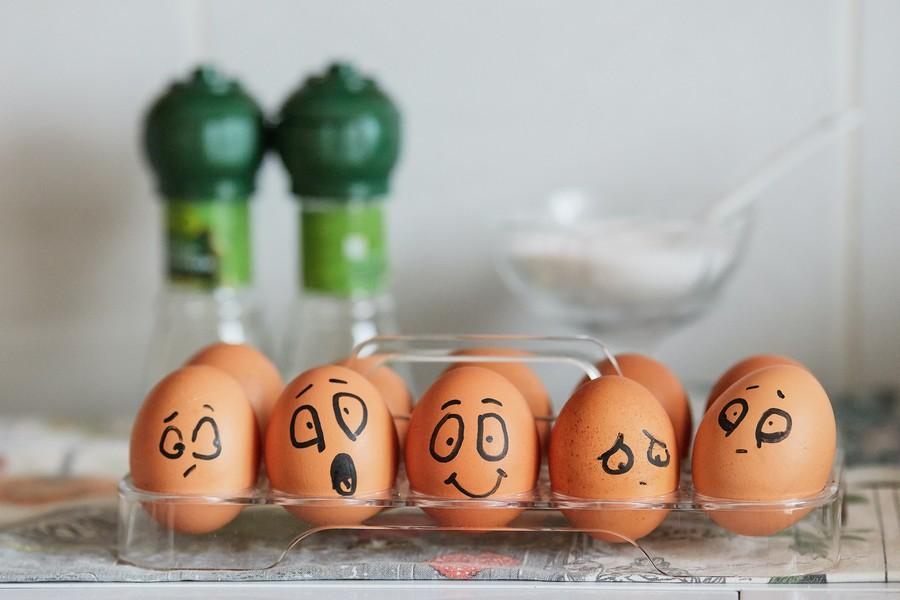 œufs dans une boite avec des dessins de bonhommes qui représentent des émotions